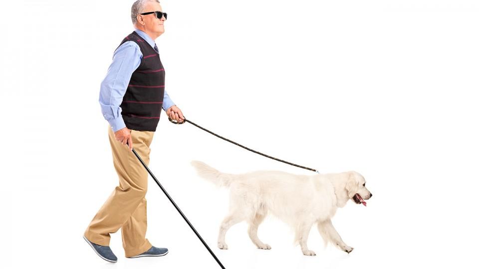 Retinopatía Diabética y casos de ceguera podrían ser evitados con nuevo medicamento en estudio
