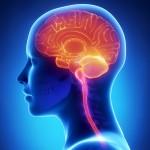 ¿Qué es la Neuropatía Diabética?