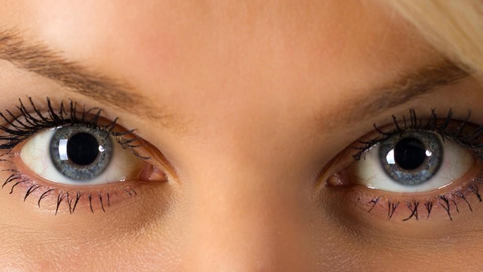 Protegiendo la vista, nuestro Sentido más Preciado